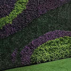 Muro Verdes El Bajío