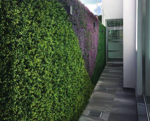 muros verdes regama del baj o